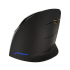 Evoluent VerticalMouse C Right Wireless Black